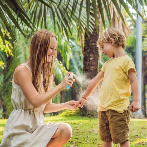 Primavera: intensifique a venda de repelentes