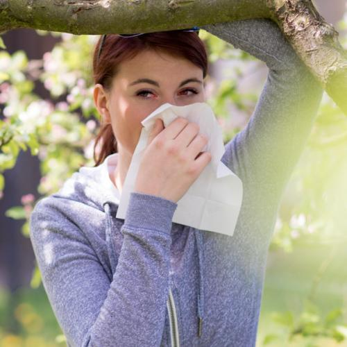 Aposte nos MIPs para as alergias respiratórias durante a primavera